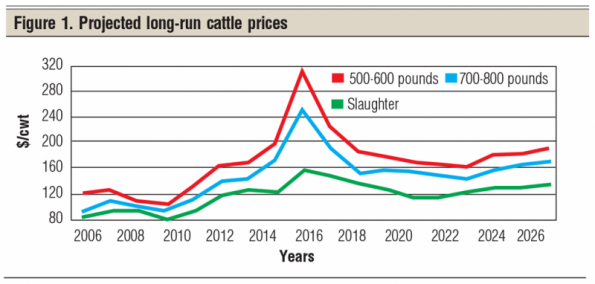 how to read cattle prices